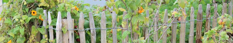 Staketenzaun und kastanienzaun für den bauerngarten